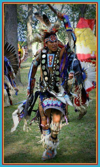 indivisible african-native american lives in the americas ebook
